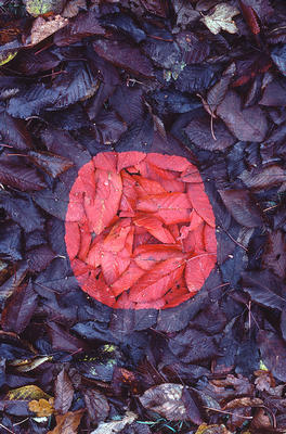 Cairns. Andy Goldsworthy - Andy Goldsworthy