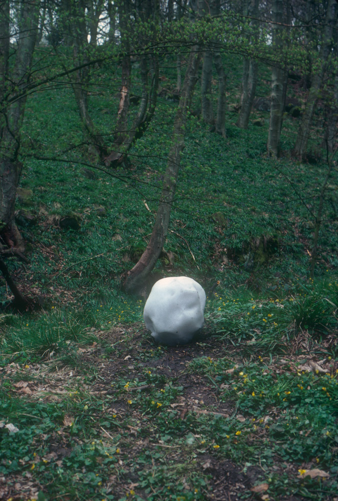 Andy Goldsworthy Digital Catalogue: Home