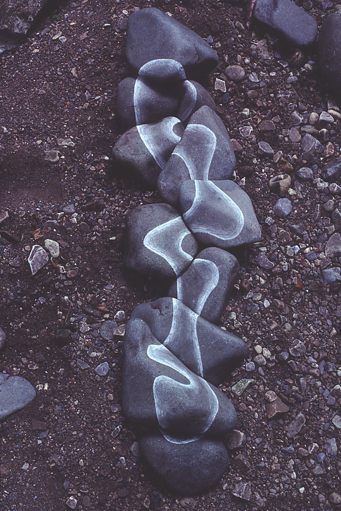 Andy Goldsworthy Digital Catalogue 1983 131